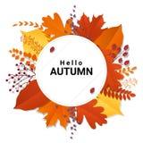 你好与五颜六色的叶子和果子背景的秋天 库存图片