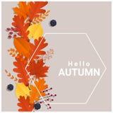 你好与五颜六色的叶子和果子背景的秋天 库存照片