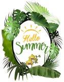 你好与卵形框架和热带植物的夏天 免版税库存图片