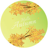 你好与文本问候的秋天背景与秋叶 免版税库存照片