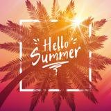 你好与棕榈和框架的夏天背景