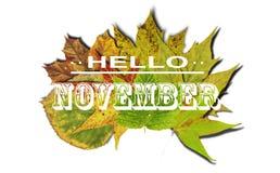 你好与色的叶子孤立的11月和秋天背景 免版税库存图片
