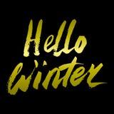 你好冬天汇集文本 向量 字法 用手画 说明刷子 信函 免版税库存照片