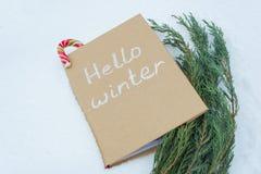 你好冬天,在多雪的背景的冬天书,与柏和圣诞节Candi藤茎分支  免版税库存照片
