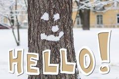 你好冬天!冬天微笑着 免版税库存图片