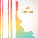 你好在波浪背景的春天字法 春天桦树森林背景 库存图片
