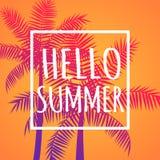 你好夏天橙色传染媒介横幅海报 向量例证