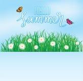 你好夏天,在草与花,春天上的蝴蝶飞行 免版税库存照片