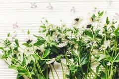 你好春天图象 与gree的美丽的雏菊和丁香花 库存图片