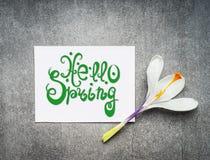 你好春天字法,春天与白色番红花的贺卡开花 库存图片