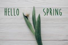 你好春天文本新标志 在土气木头的时髦的白色郁金香 免版税库存图片