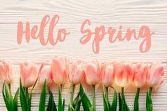 你好春天文本标志,在白色土气wo的美丽的桃红色郁金香 免版税库存图片