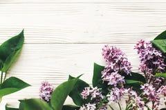 你好春天舱内甲板位置图象 在土气w的美丽的淡紫色花 免版税库存照片