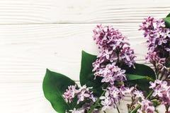你好春天舱内甲板位置图象 在土气w的美丽的淡紫色花 免版税库存图片