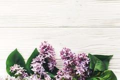 你好春天舱内甲板位置图象 在土气w的美丽的淡紫色花 库存照片