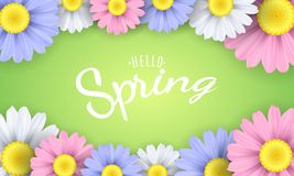 你好春天词组 季节性海报 在绿色背景的多色春黄菊花 也corel凹道例证向量 库存照片