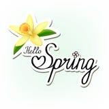 你好春天 与黄色花的纸问候贴纸在轻的背景 免版税图库摄影