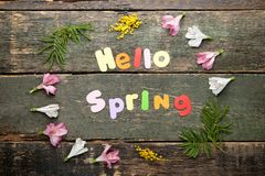 你好有花的春天 库存图片
