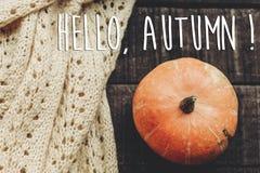 你好秋天文本,贺卡 简单的秋天图象舱内甲板位置 是 免版税库存照片