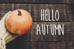 你好秋天文本,贺卡 简单的秋天图象舱内甲板位置 Ha 库存照片