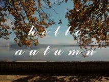 你好秋天,在树背景的描述  免版税图库摄影