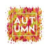 你好秋天 另外色的秋叶背景 也corel凹道例证向量 免版税库存图片