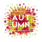 你好秋天 另外色的秋叶背景 也corel凹道例证向量 库存照片