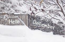 你好12月 降雪在有树的乡下在雪 免版税库存照片