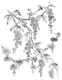 佩兹利花卉设计 免版税库存照片