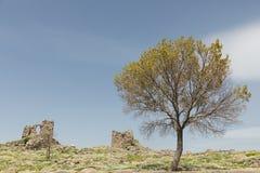 佩尔加蒙古城的废墟 库存照片