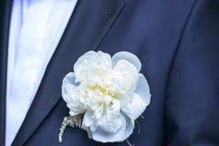 佩带一朵白色牡丹钮扣眼上插的花的特写镜头新郎 库存照片