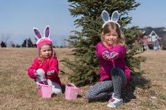 佩带与兔宝宝` s耳朵的两个可爱的白肤金发的白种人姐妹在草甸的冷杉下参加复活节彩蛋狩猎 库存照片