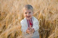 佩带传统乌克兰的年轻男孩在麦子穿衣 库存照片