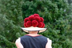 佩带传统Bollenhut的可爱的妇女 免版税库存图片