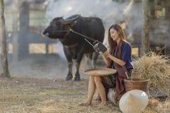 佩带传统泰国文化,在领域、葡萄酒样式听的收音机在水牛和农厂背景的亚裔妇女 库存照片