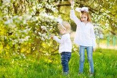 佩带在复活节的两个妹兔宝宝耳朵 免版税图库摄影