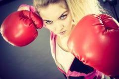 佩带妇女的恼怒的拳击手套 免版税图库摄影