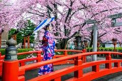 佩带日本传统和服和樱花在春天,京都寺庙的亚裔妇女在Japanใ 库存照片