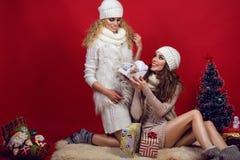 佩带白色的两个美丽的微笑的女朋友编织了给礼物的帽子、围巾和毛线衣在圣诞树 库存照片