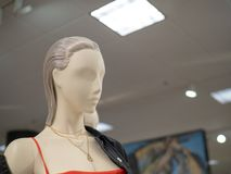 佩带皮夹克和项链在departm的母时装模特 免版税库存照片