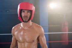 佩带红色头饰的赤裸上身的男性拳击手画象  免版税库存图片