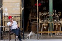 佩带菲斯的人在开罗,埃及 图库摄影