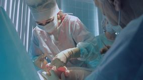 佩带被消毒的衣物执行的reimplantation的整形外科医生 股票视频