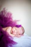 佩带紫色毛线的一个睡觉的女婴 免版税库存照片