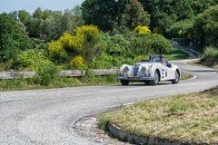 佩萨罗COLLE圣BARTOLO,意大利- 2018年5月17日- :在集会Mille Miglia 2018的捷豹汽车XK 140 OTS 1954老赛车著名ita 库存照片