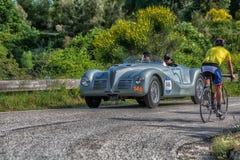 佩萨罗COLLE圣BARTOLO,意大利- 2018年5月17日- :在集会Mille Miglia 201的阿尔法・罗密欧6C 2500 SS蜘蛛COLLI 1947old赛车 免版税库存图片