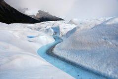 佩里托美利奴绵羊的冰川的河在巴塔哥尼亚 库存照片
