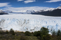 佩里托莫雷诺冰川,埃尔卡拉法特,阿根廷 免版税库存照片