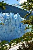 佩里托莫雷诺` s冰川细节  免版税库存照片