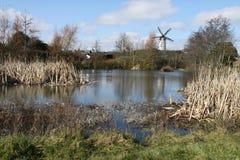 使一台风车环境美化的图象在湖的 免版税库存照片